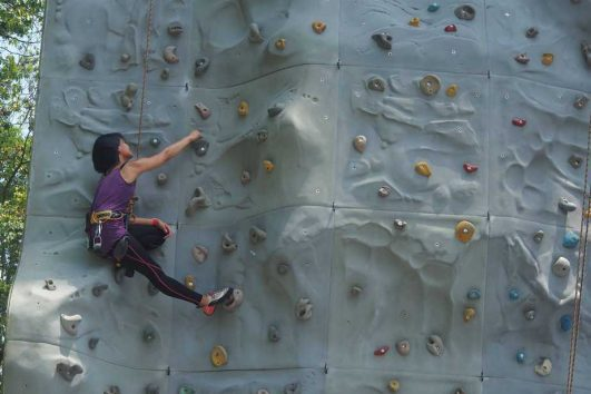 National Climbing Standards